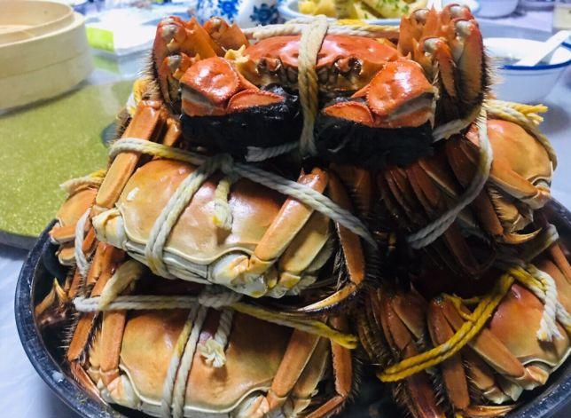 精品阳澄湖农家乐,一次不一样的阳澄湖吃蟹之旅