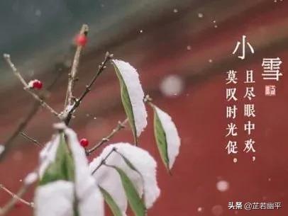 小雪|初冬天不瑟,扑面迎飞雪