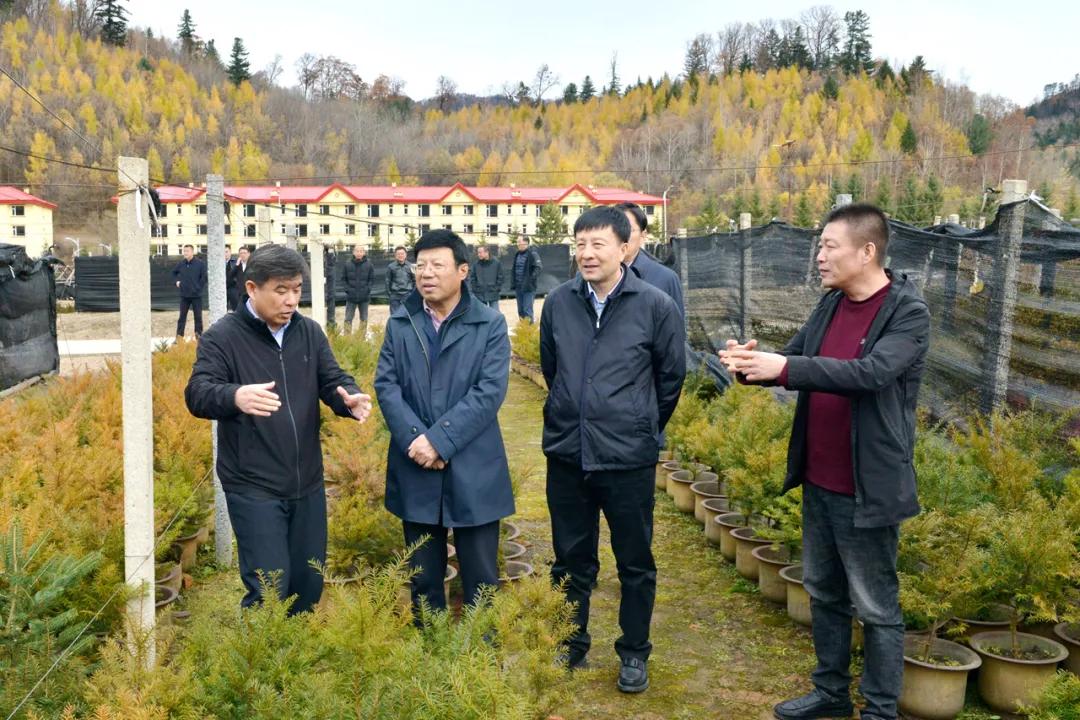 延邊州政協主席韓興海到長白山森工集團調研