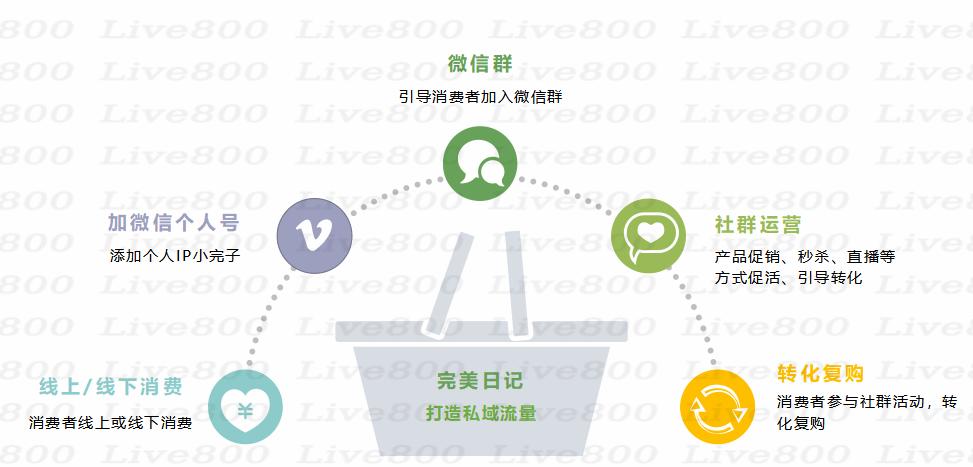 Live800:解析私域流量,是企业的救命稻草?