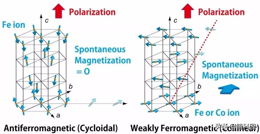 研究了20年,终于证明:顺磁铁电晶体中的磁电耦合