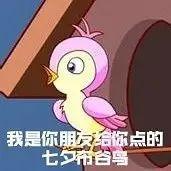 """七夕青蛙火爆全网,你被""""孤寡""""了吗?"""