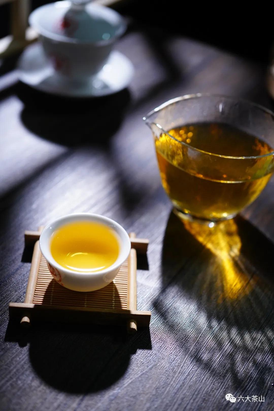 各具特色的茶韵、山韵、神韵,展示了云南山头茶的魅力