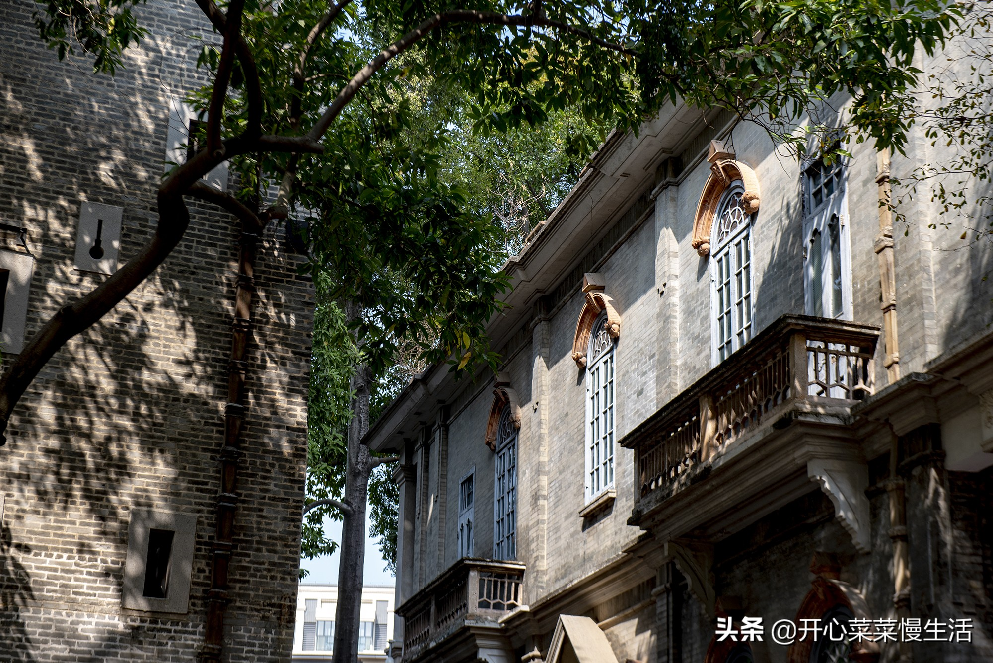 过年去哪儿玩?广东佛山五个区,我把好玩的景点全列出来了