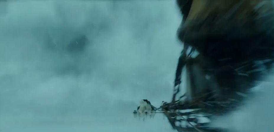 躲冰裂冲雪暴心惊肉跳!迪士尼凭啥复活感人神犬《多哥》