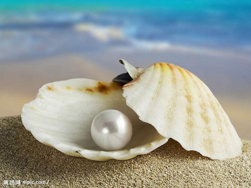 """丁真有小白马""""珍珠"""",广西这里遍地都是珍珠"""