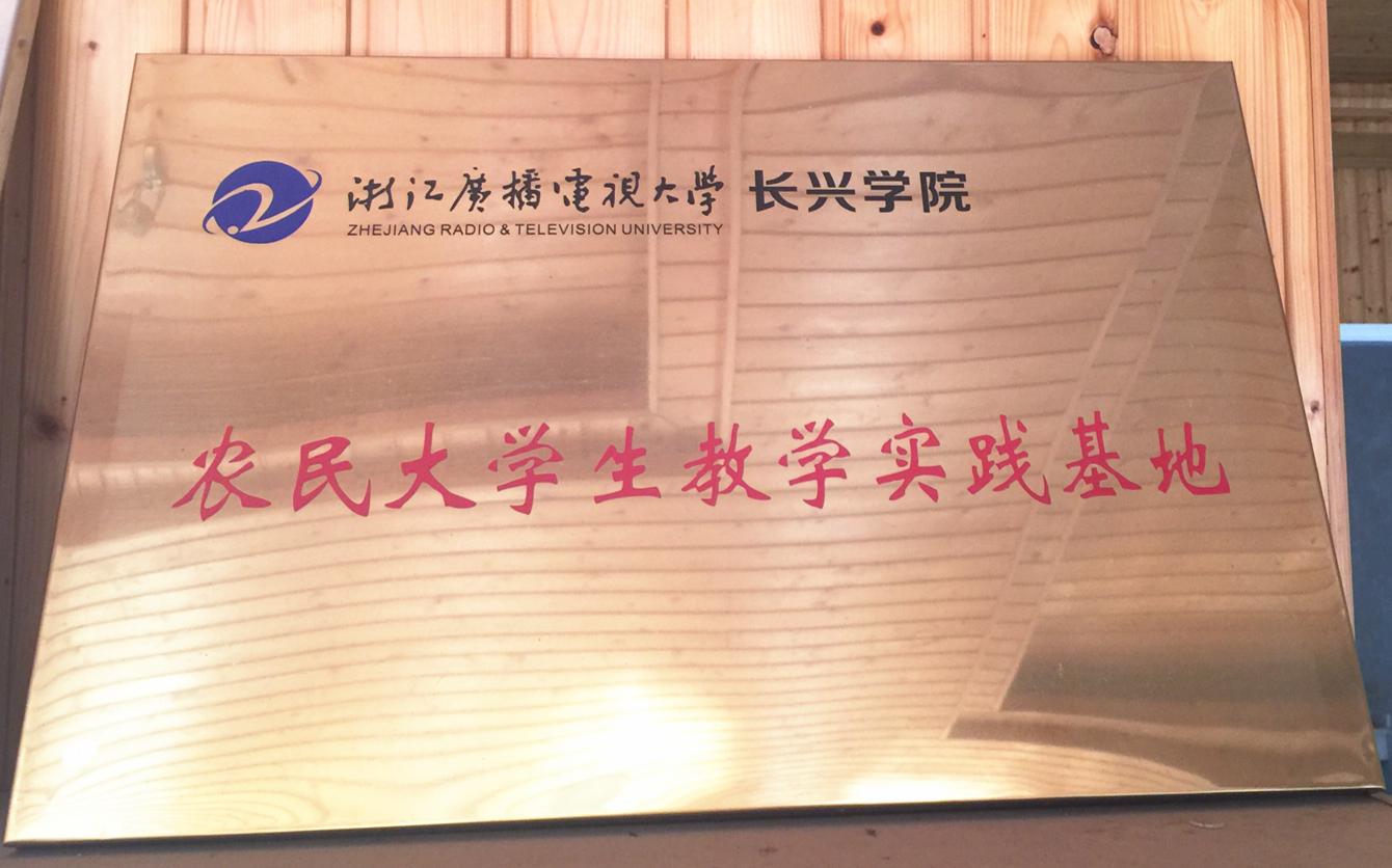 """陈正鸣打造生态农业园:绽放""""浙江最美赏花胜地""""风采"""