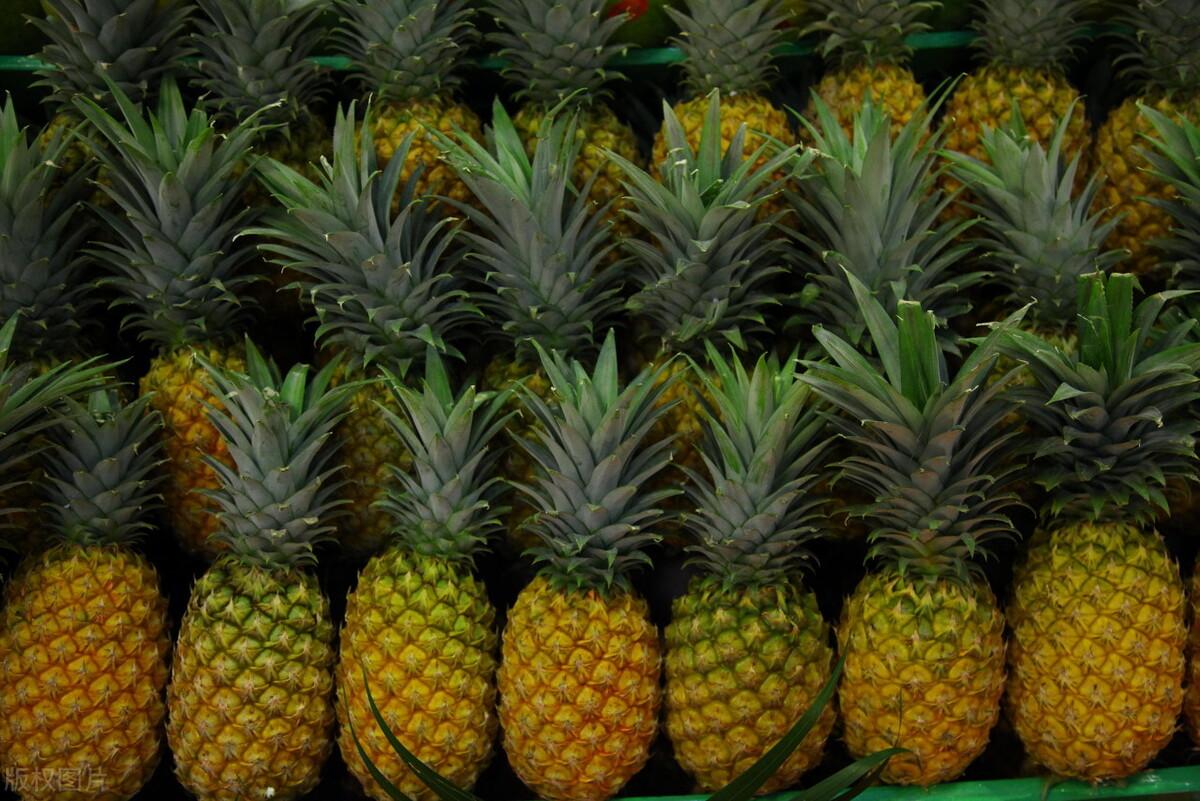 春天菠萝正当季,买菠萝时,牢记3个技巧,买到的香甜新鲜不涩口 美食做法 第3张