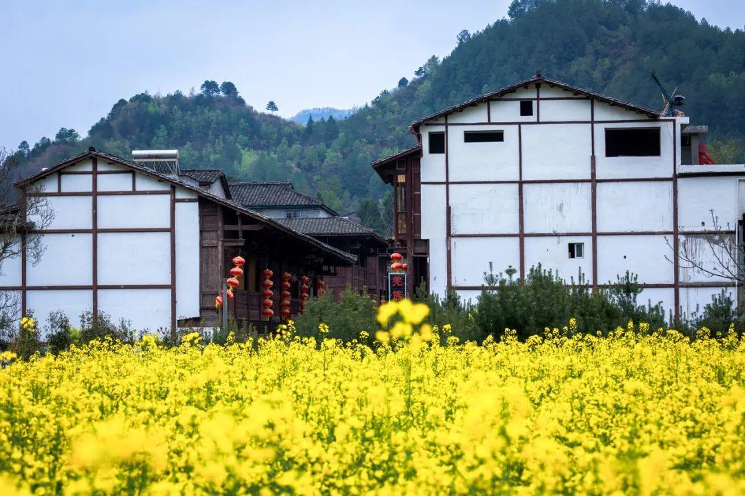 中国最传奇古镇,一脚踏三省,来了就不想离开!