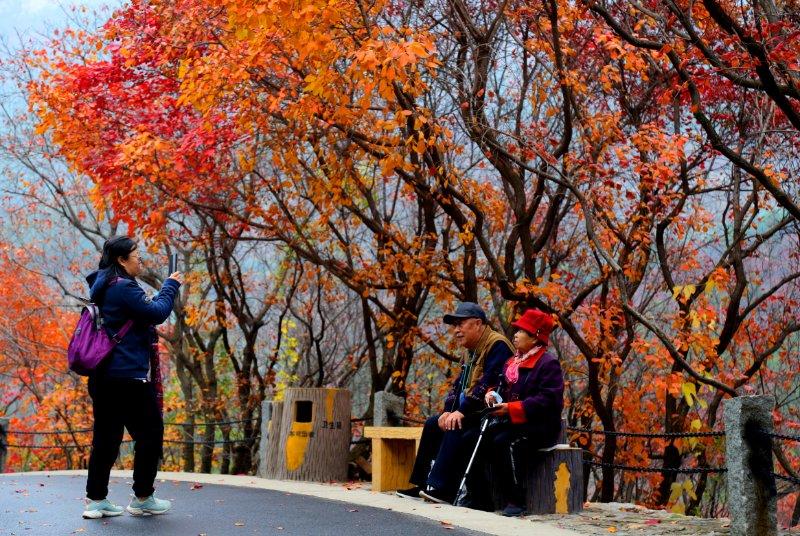 万山红遍,深秋来红叶谷感受醉美秋色