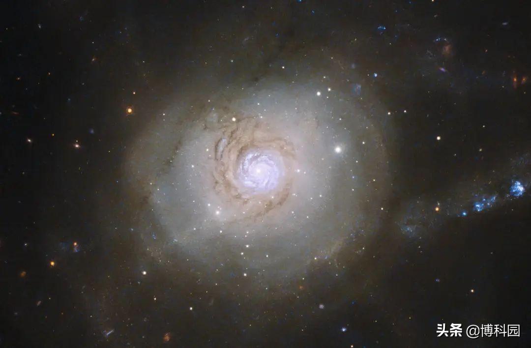 重磅发现:对20万个螺旋星系的研究表明,早期宇宙或许一直在转
