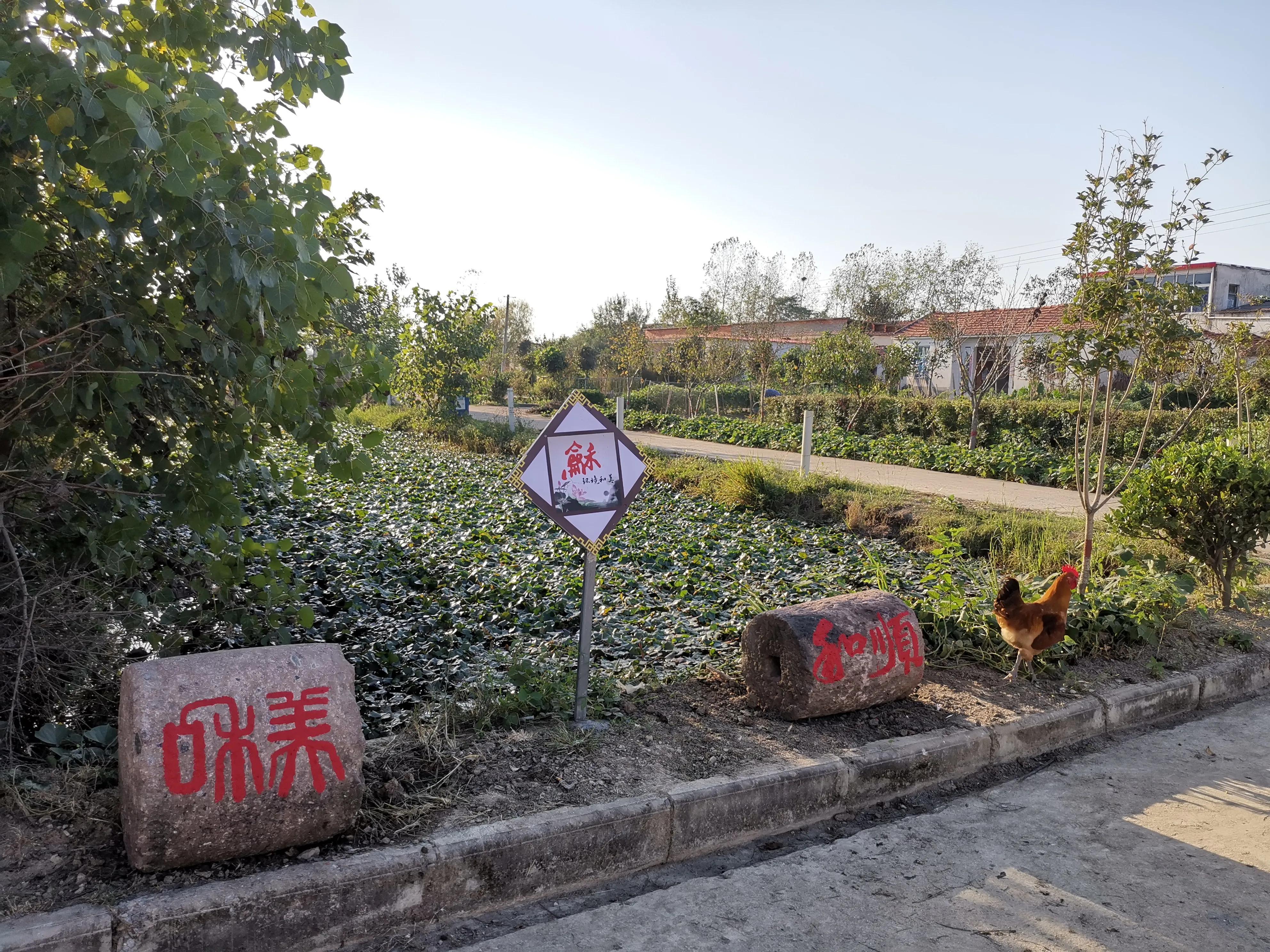 潢川县高楼村举办第六期乡风文明会客厅