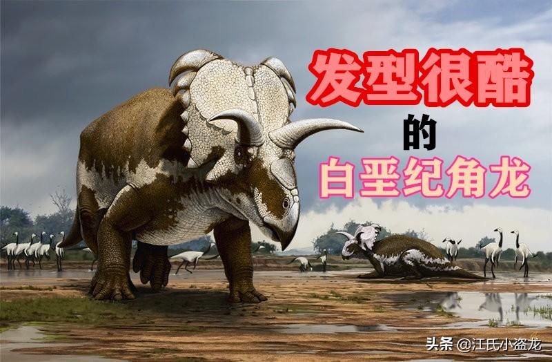 """7500万年前的神奇角龙""""发型很酷"""""""