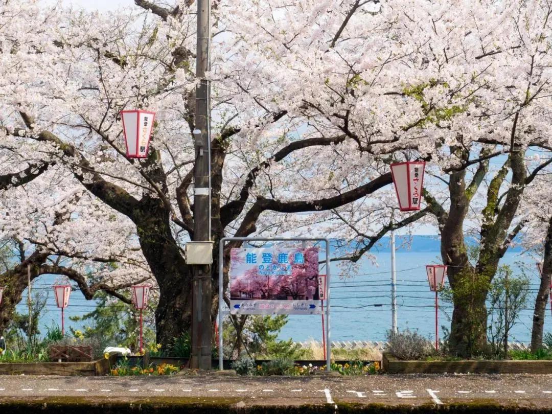圣地巡礼!日本动漫中绝美车站大盘点