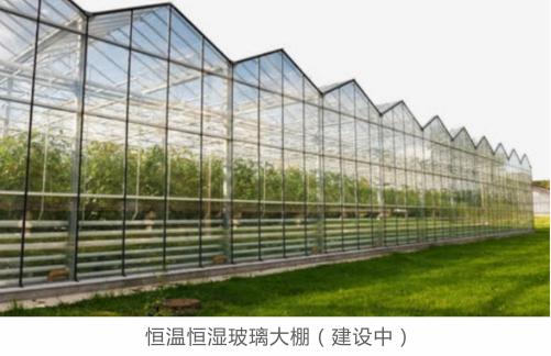 四川牵手智利建设农业科技示范园,智利车厘子将引种四川