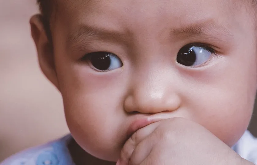 吃什么有助于孩子的大脑功能和记忆力呢?