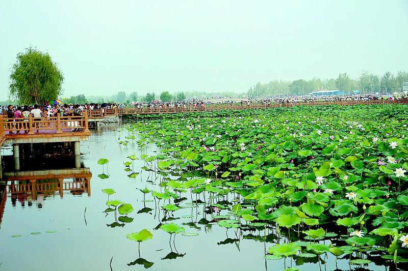 山东人口第一大县,常住人口约138万,名气大风景美适合游玩