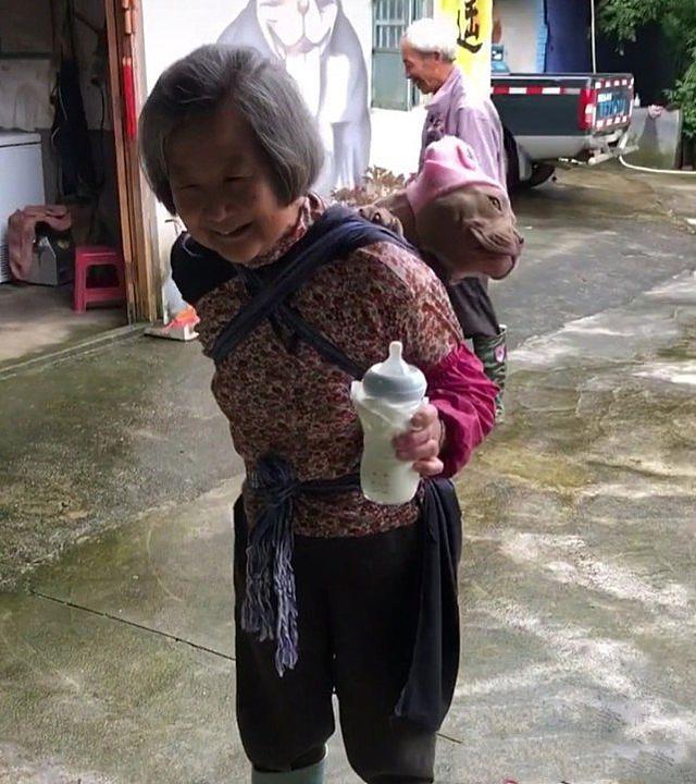 """遠看奶奶背上有個""""孩子"""",正好奇是哪家的,湊近後發現是汪"""