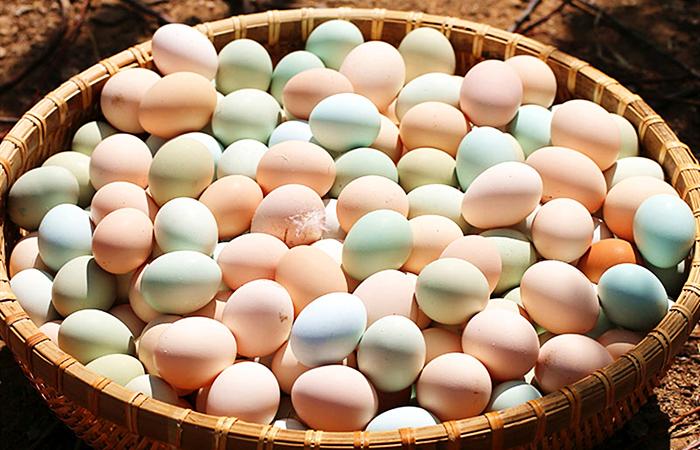 买鸡蛋时,白壳的、黄壳的、绿壳的有什么区别,哪个营养更好? 亨饪做法 第1张