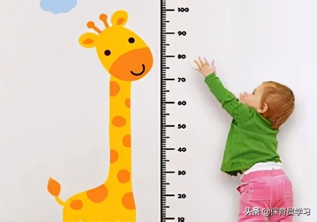 頭圍測量方法(身高,體重,頭圍,胸圍的測量方法)