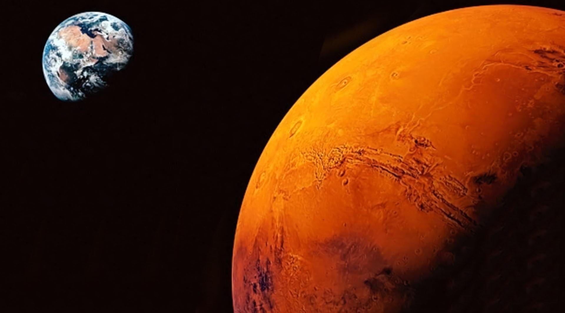 事实证明有生物可以在外太空中生存,或将颠覆我们对地外生命的认知-第1张图片-IT新视野