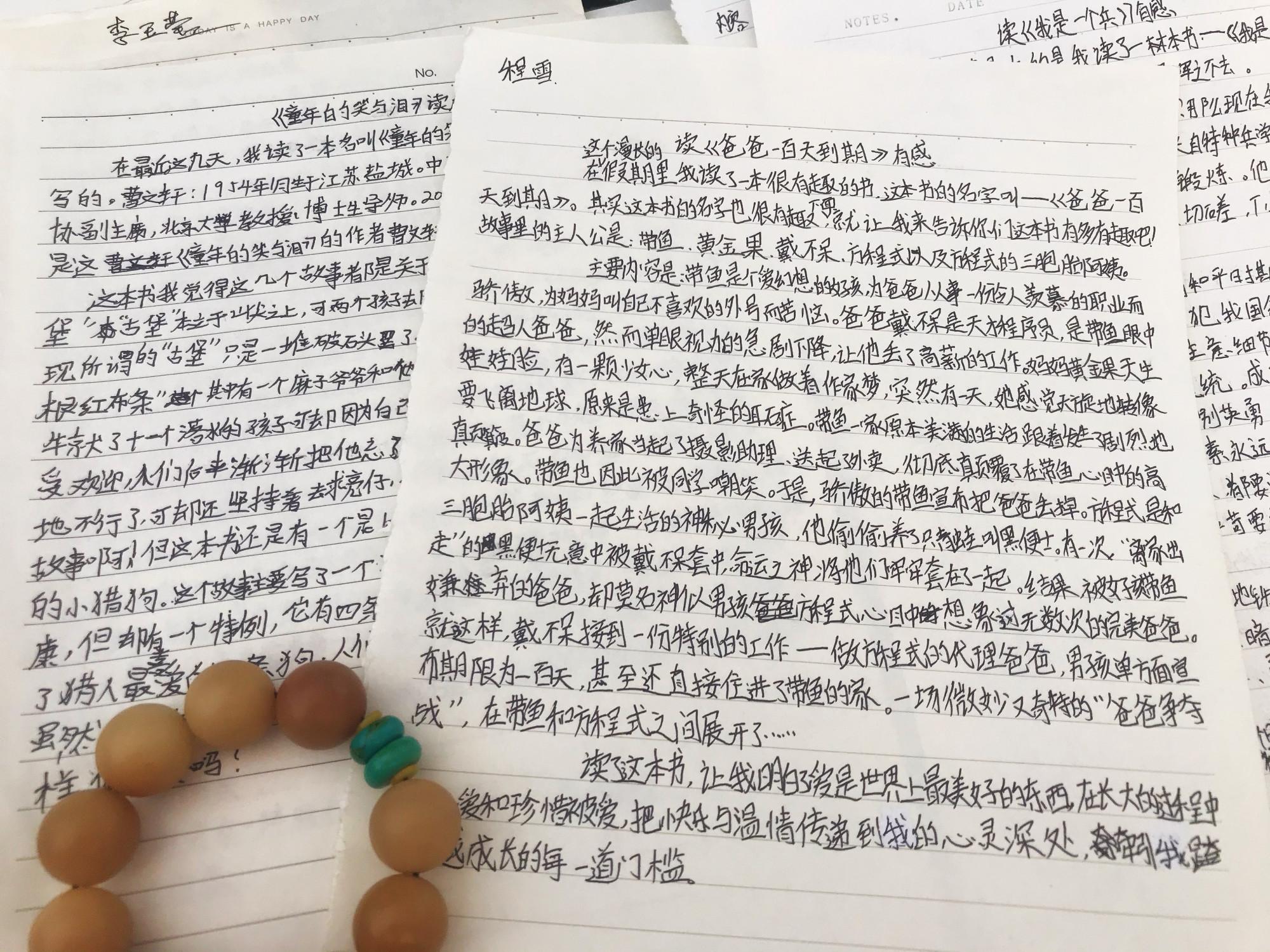 《双生花朵》读后感700字怎么写,优秀高分作文参考  第3张