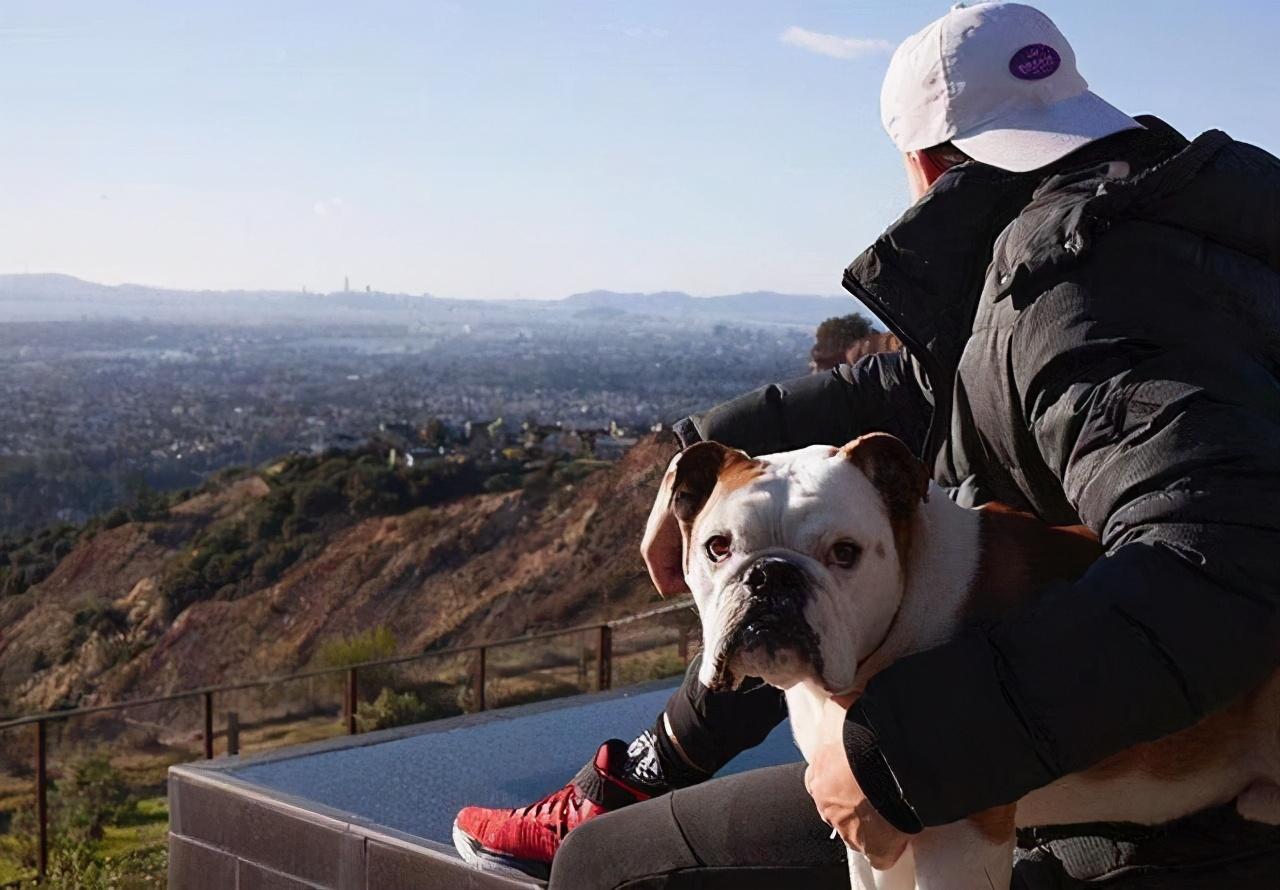 卢尼晒训练照大腿粗壮,克莱只爱篮球和狗子,为得字母哥宁愿梭哈