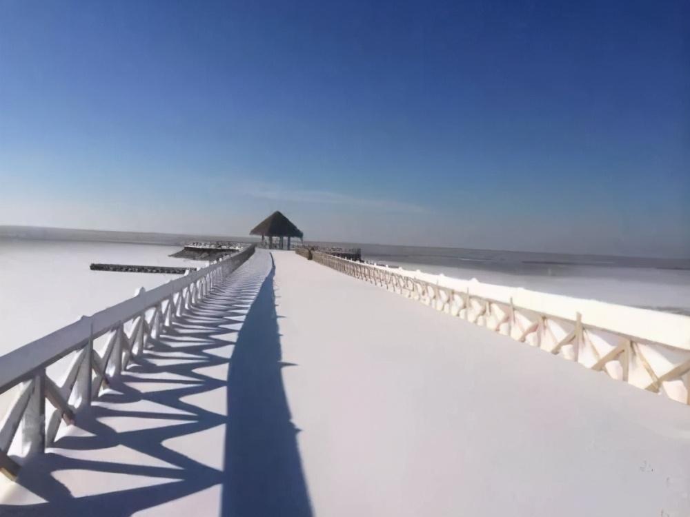 到哈素海感受春夏秋冬,只有一个字来形容:美