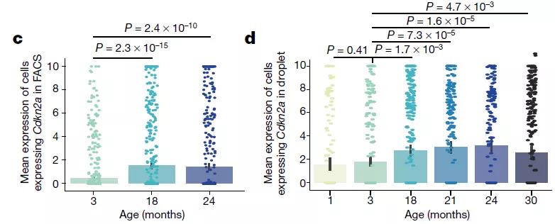 Nature背靠背 | 揭示衰老秘密(一) :小鼠衰老组织的单细胞图谱