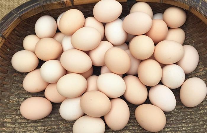 买鸡蛋时,白壳的、黄壳的、绿壳的有什么区别,哪个营养更好? 亨饪做法 第3张