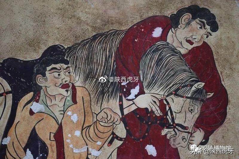 昭陵墓葬壁画赏析:韦贵妃墓《献马图》
