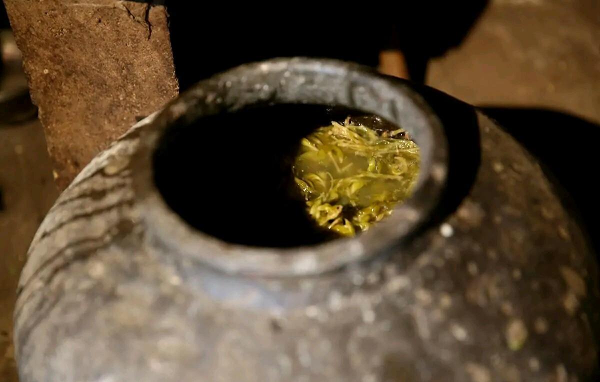 过去汉中洋县人的美味叫苞谷拉拉和浆水菜