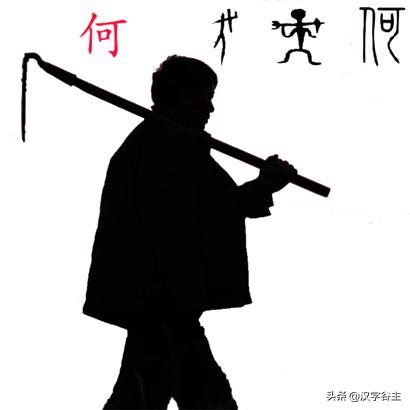 汉字植物课:大语文这样学,把与荷花有关知识及字词诗文一网打尽