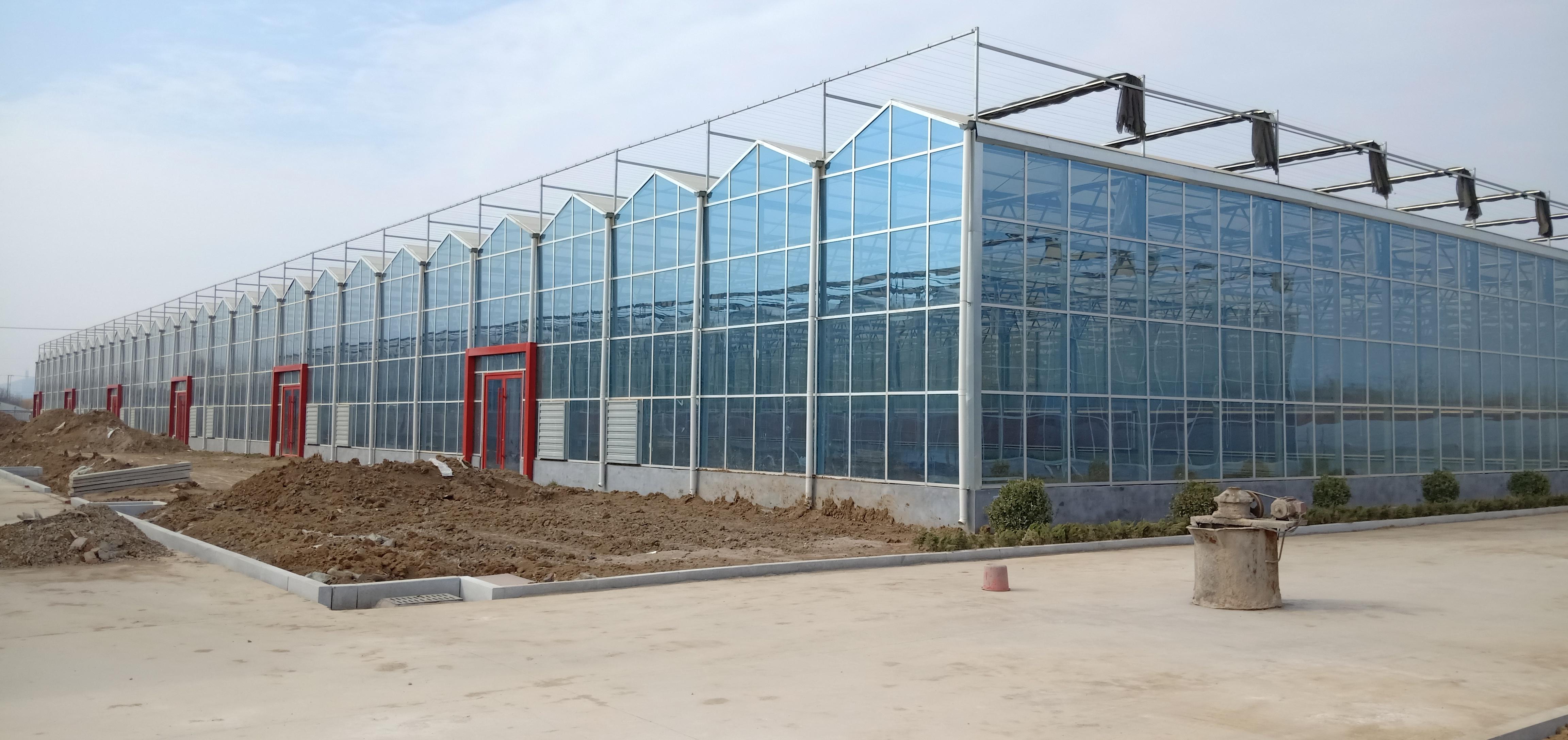 可以获得补贴的现代化连栋温室大棚可以做什么?一亩地造价多少