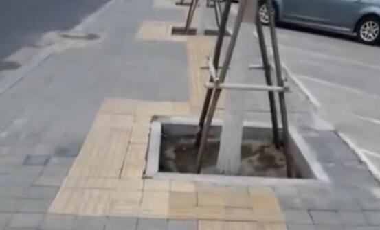 """东方快评丨150米盲道""""十八弯""""莫让盲道成盲人陷阱"""
