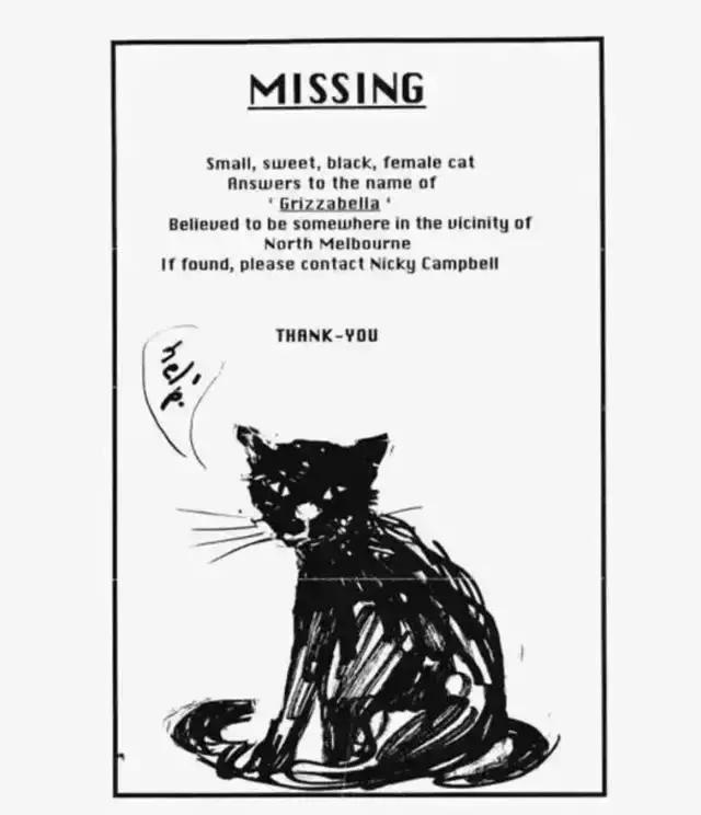 我收集的这些寻猫启示脑洞太大了,我就想问,你画的是什么?