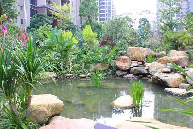 三远大爱城—万达广场附近公园里的家