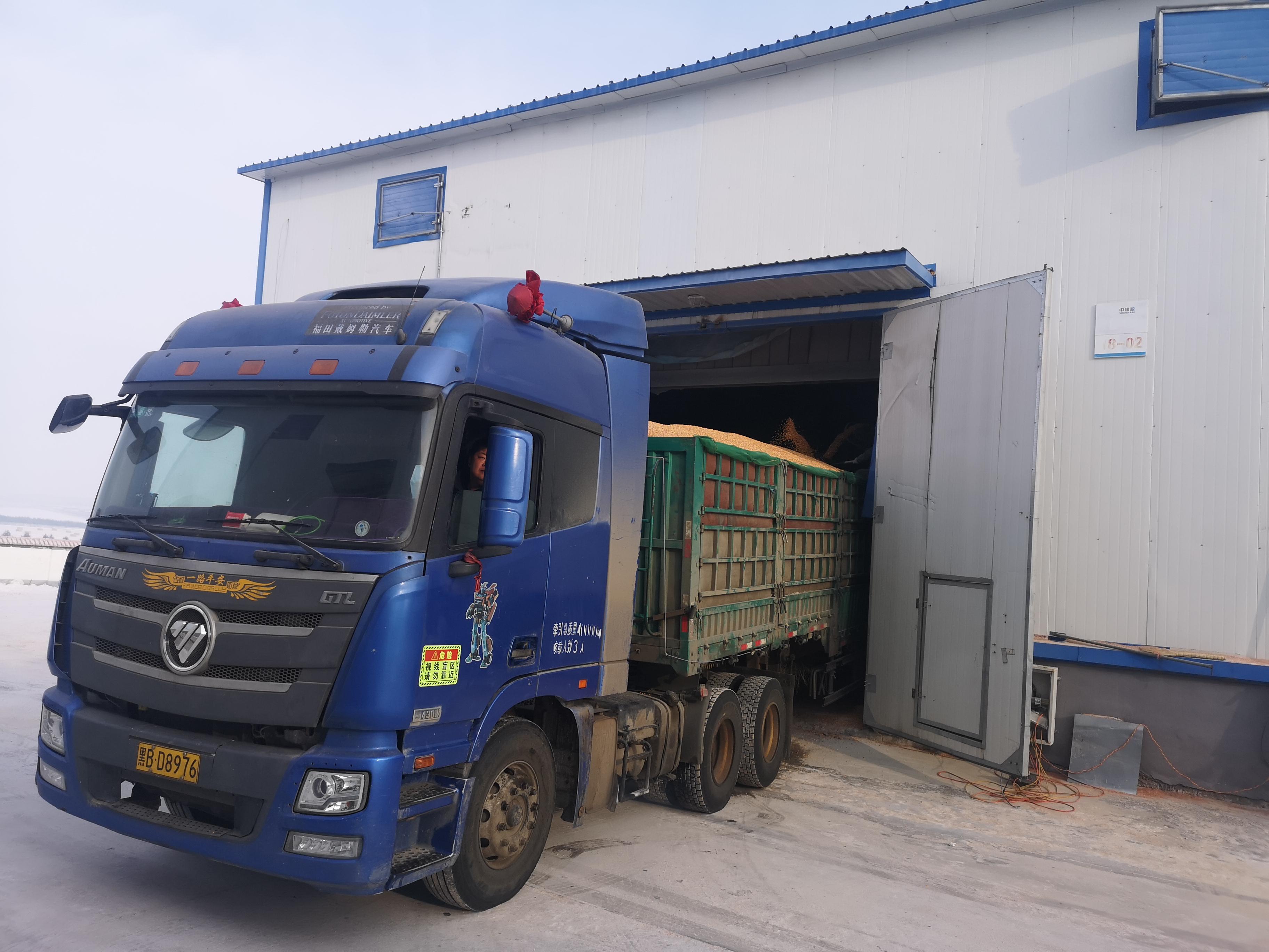 内蒙古:甘河农牧场分公司实现粮食销售开门红
