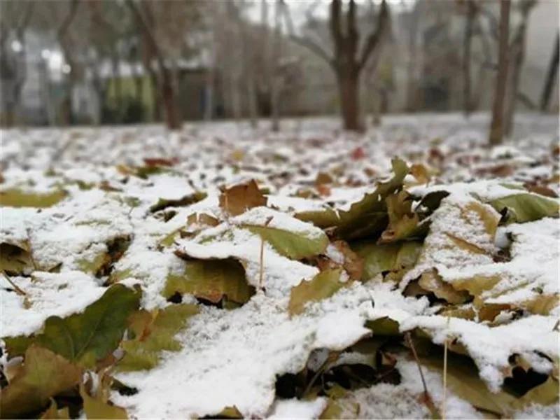 这个冬天,不要再被这些谣言给骗了!