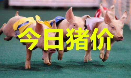 """进入9月,猪价迎来""""开门红"""",全线暴涨,9月能迎来15元的猪价?"""