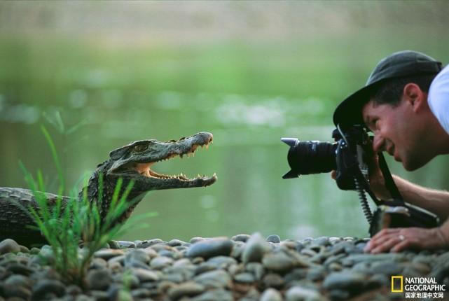 超赞的动物摄影作品,每一张都精彩