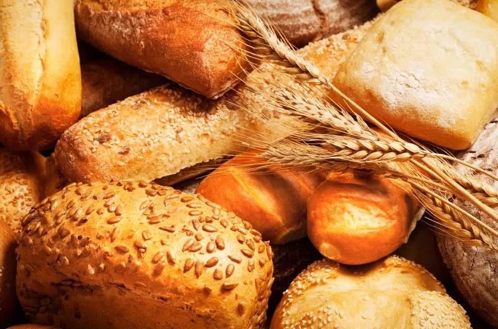 《禅者的初心》读后感之:做事就像烤面包,要纯熟必须不断尝试