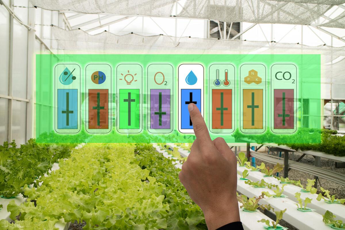 智能溫室大棚設計控制系統需要滿足哪些需求?