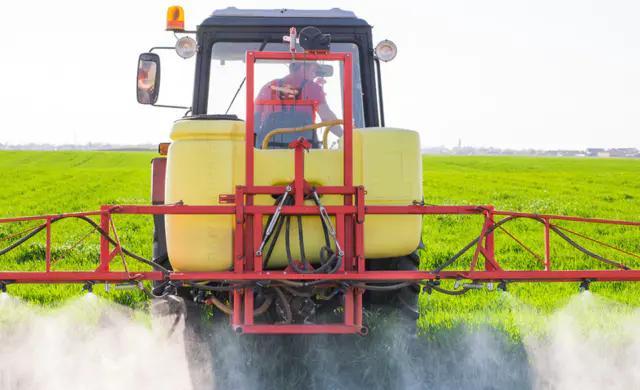 小麦的杀手正在慢慢威胁逼近,农户注意防治