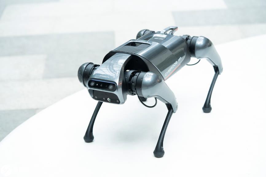 """""""铁蛋""""遛后感:关于CyberDog仿生四足机器人的思考"""