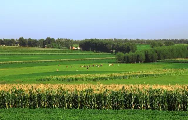 这些现代农业生产方式你都了解吗?