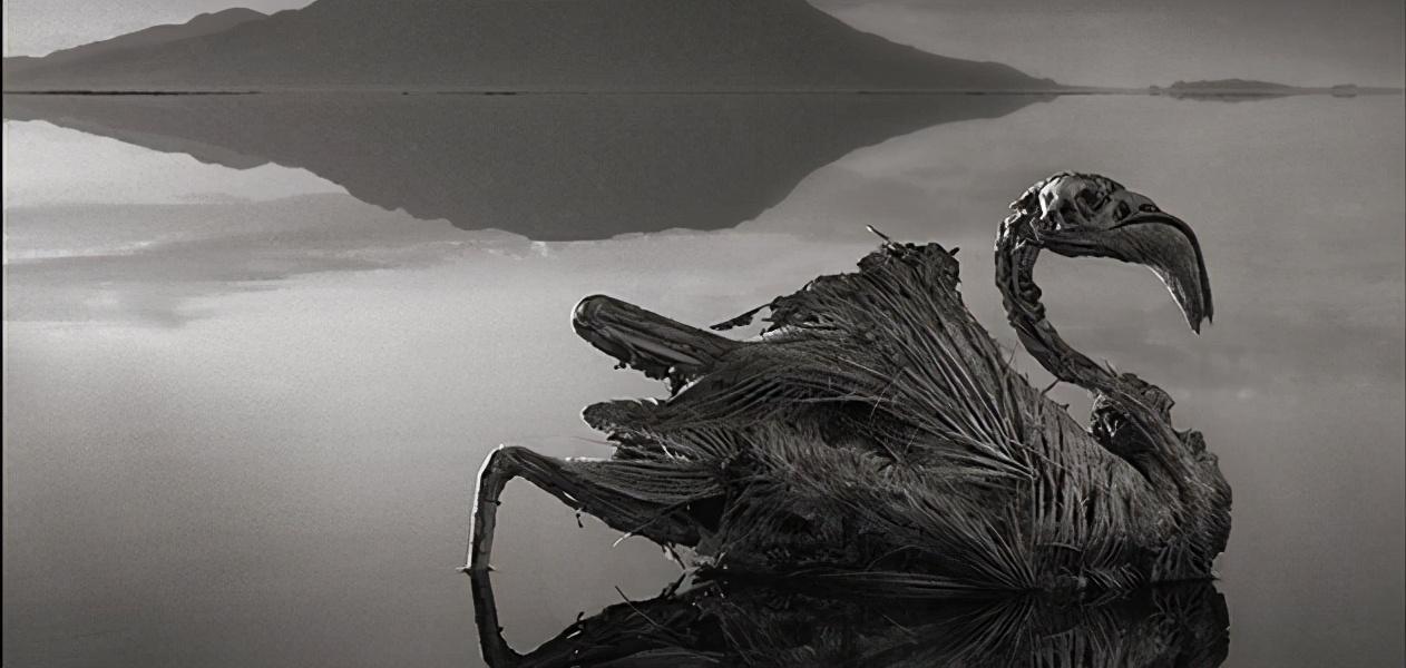 纳特龙湖:动物无故坠落变成石头,却吸引200多万只火烈鸟来此