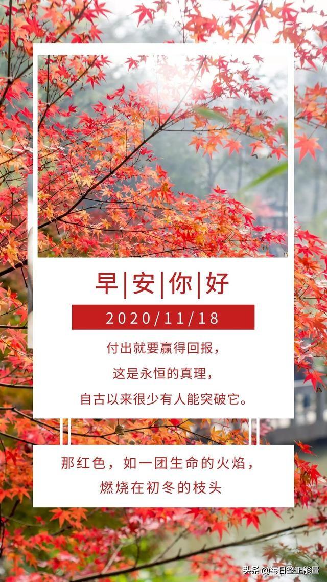 正能量11月18日星期三早安日签,读正能量励志暖