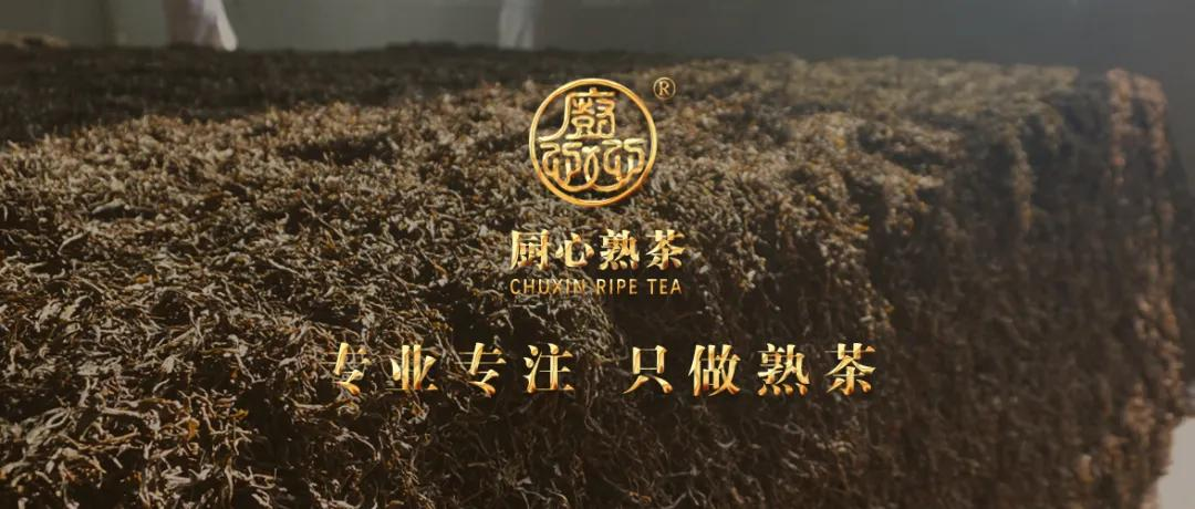 熟茶,大健康产业,抓住热点商机