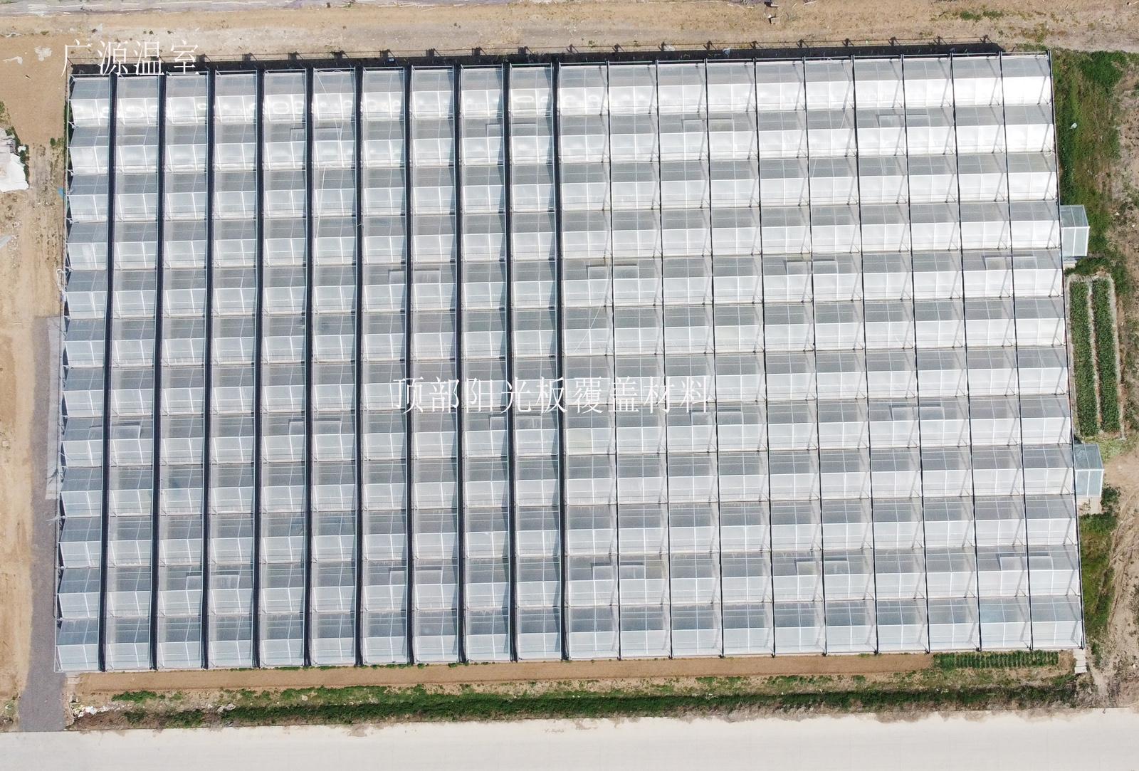 育苗玻璃温室大棚建造案例尺寸分享
